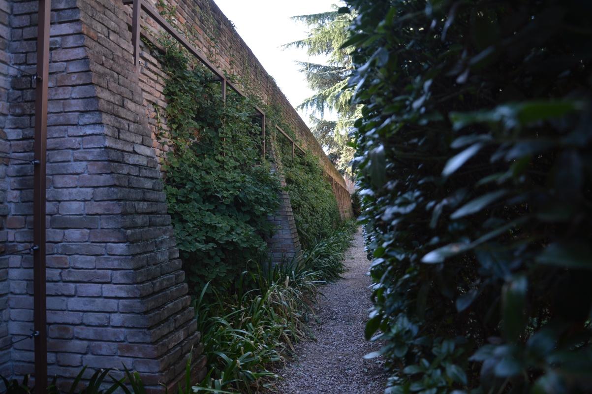 Camminata muro - Laura Dolcetti - Ferrara (FE)