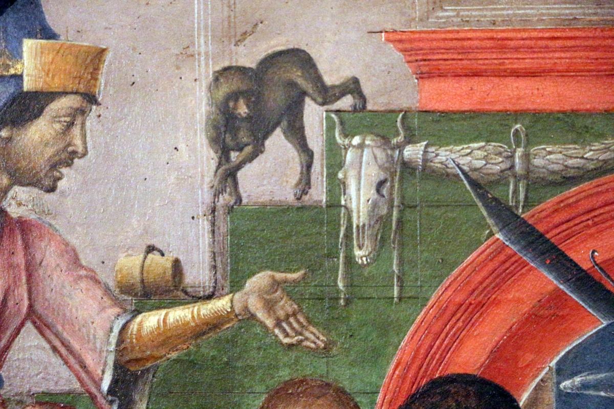 Cosmè tura, giudizio di san maurelio, 1480, da s. giorgio a ferrara, 04 scimmia - Sailko - Ferrara (FE)