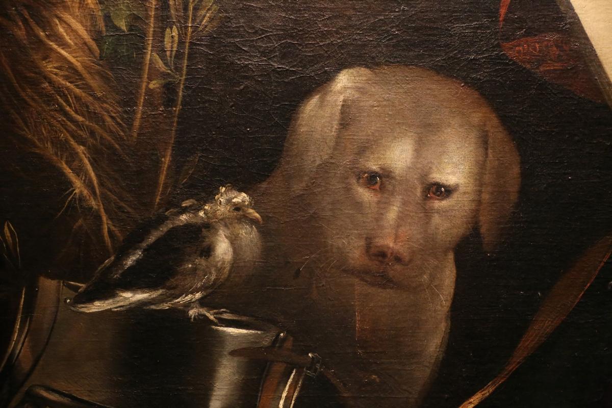 Dosso dossi, melissa, 1518 ca. 04 cane - Sailko - Ferrara (FE)