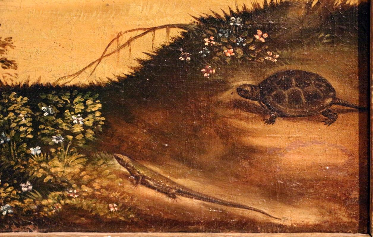 Maestro dei dodici apostoli, giacobbe e rachele al pozzo, ferrara 1500-50 ca. 10 tartaruga e lucertola - Sailko - Ferrara (FE)
