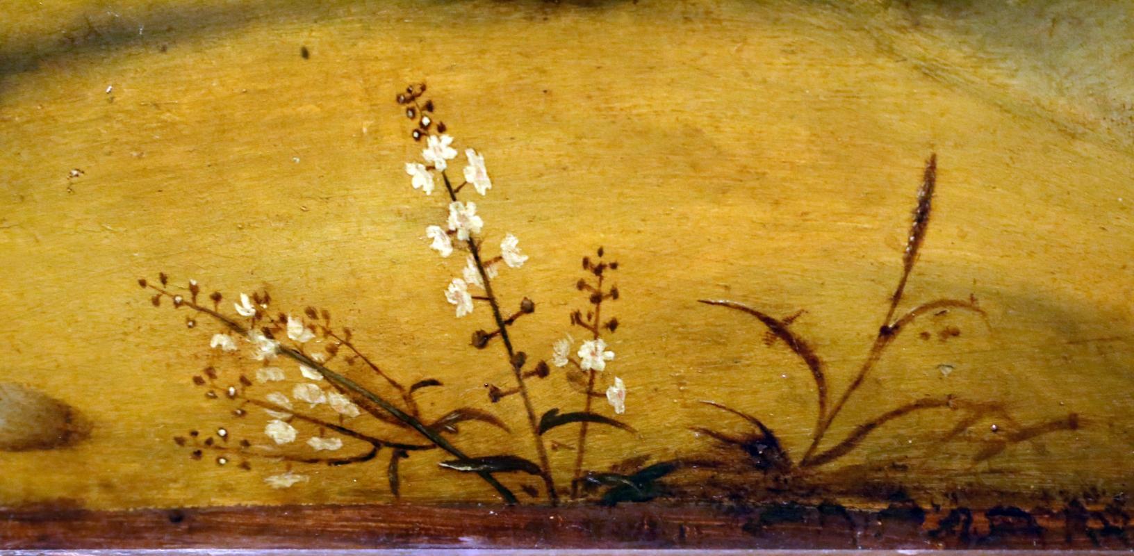 Piero di cosimo, perseo libera andromeda, 1510-13 (uffizi) 19 - Sailko - Ferrara (FE)