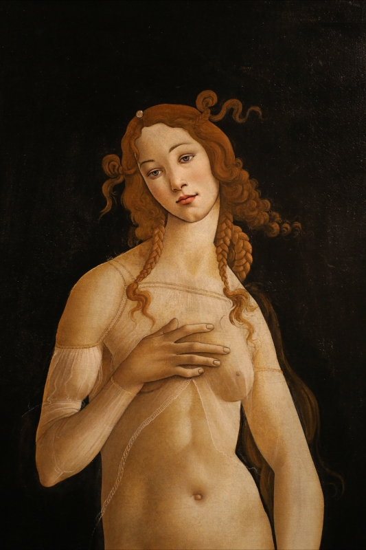 Sandro botticelli e bottega, venere pudica, 1485-90 ca. (galleria sabauda) 02 -  - Ferrara (FE)