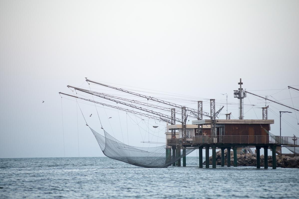 La pesca nella nostra terra - Francesco-1978 - Comacchio (FE)