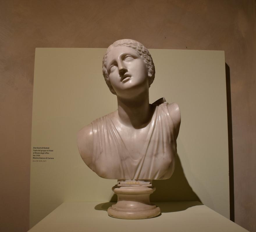 Busto di Niobe, collezione Riminaldi, Palazzo Bonacossi, Ferrara - Nicola Quirico - Ferrara (FE)