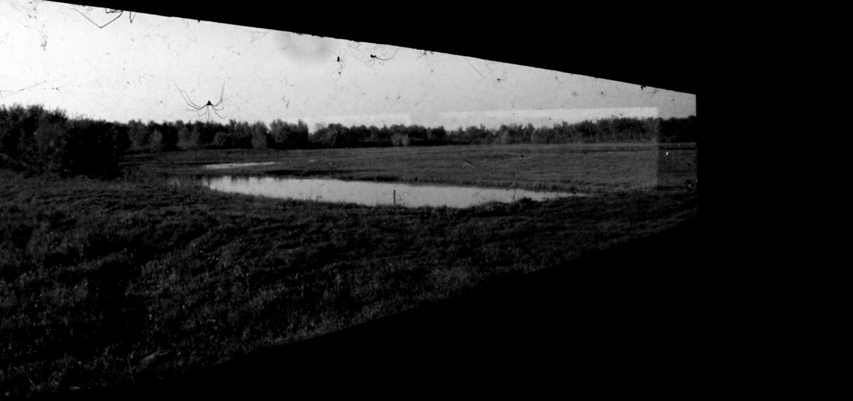 Oasi black and white - Chiara Guidetti 97 - Carpi (MO)