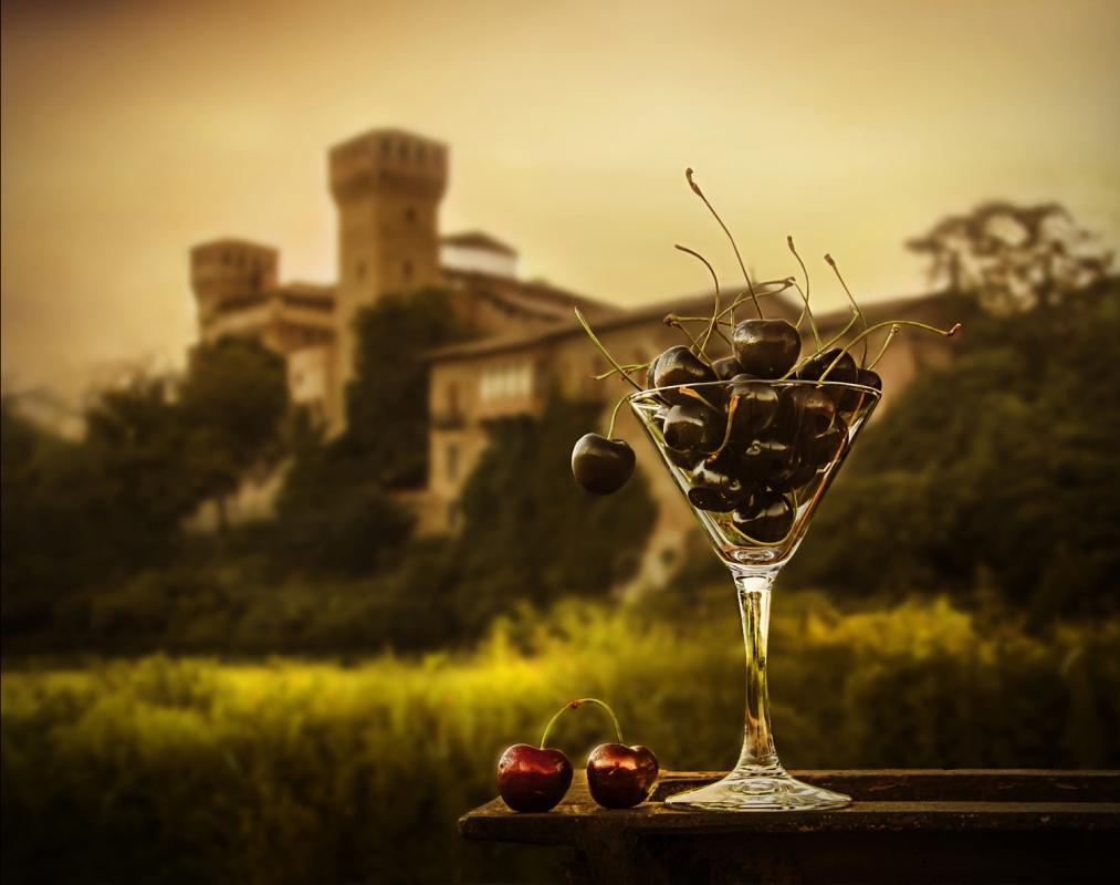 Rocca di Vignola vintage - Lara zanarini - Vignola (MO)