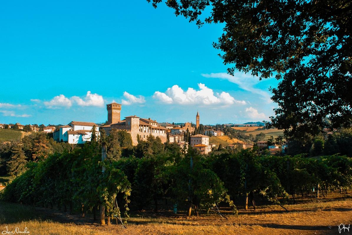 Levizzano Rangone - Luca Nacchio - Castelvetro di Modena (MO)