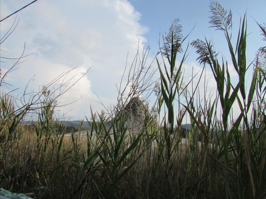 Salse Nirano1 - Tittovitto - Fiorano Modenese (MO)