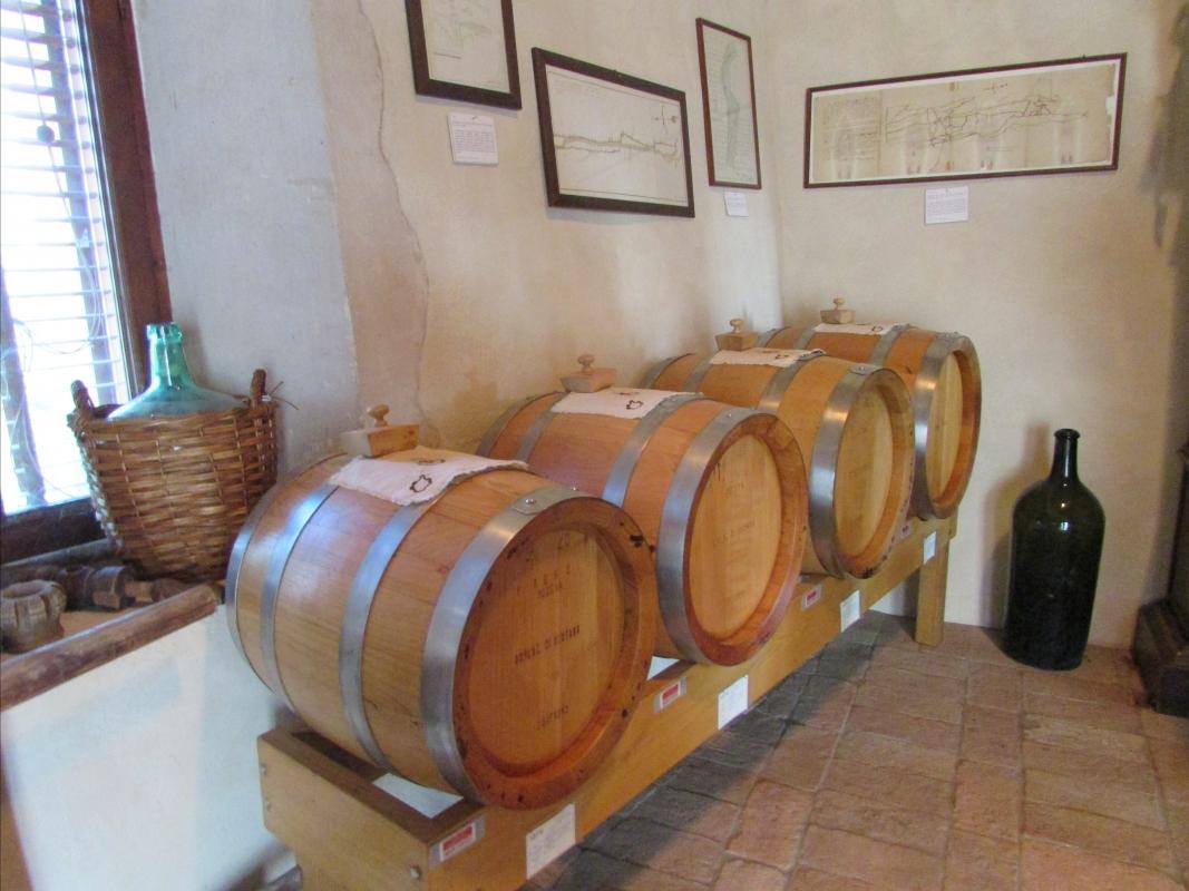 Castello Spezzano1 - Tittovitto - Fiorano Modenese (MO)