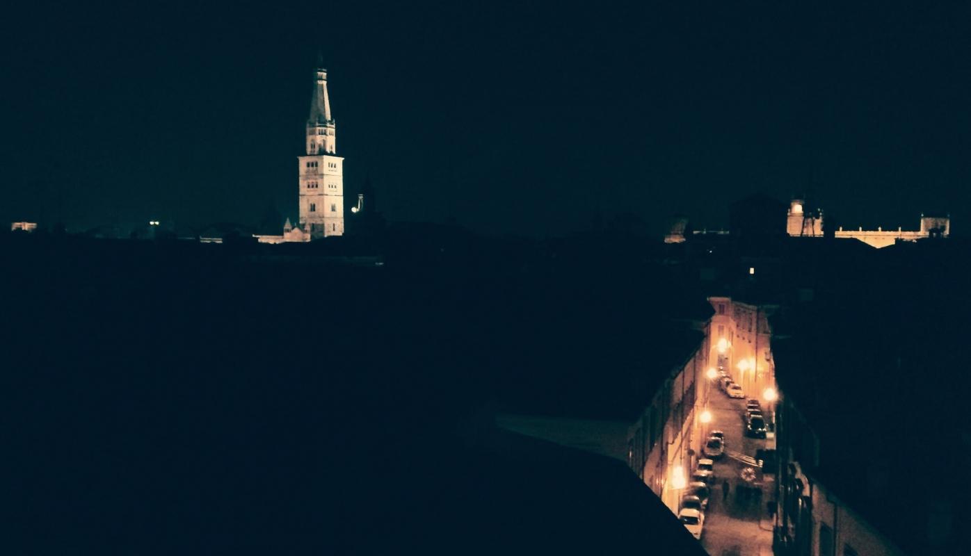 Ghirlandiana da campanile via saragozza - Francesco Bindo - Modena (MO)