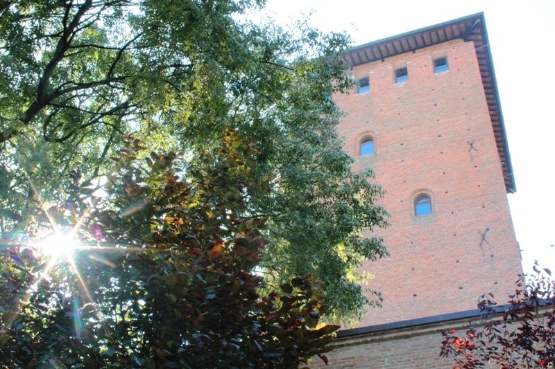 Torre Bolognesi 4 - Alberto Marchetti - Nonantola (MO)