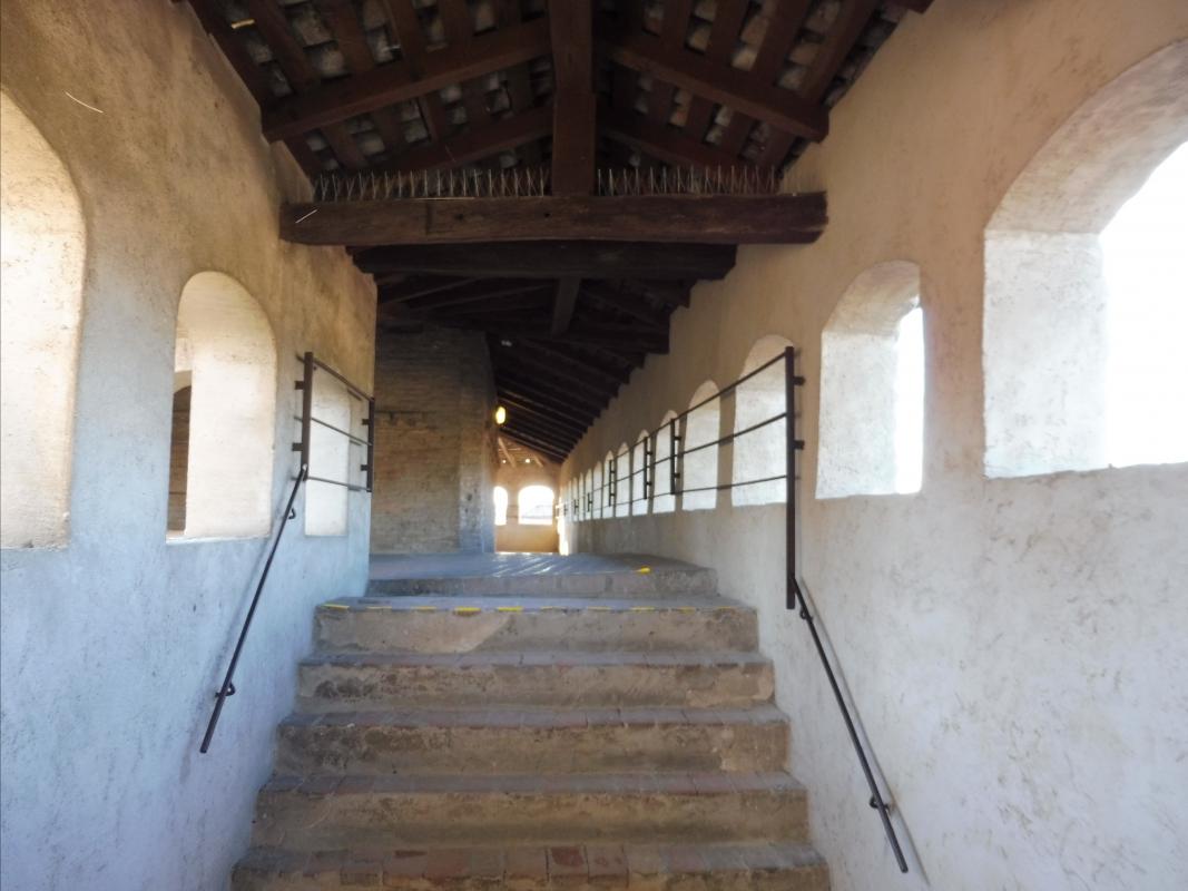 Mirco, Castello di Vignola, piano militari - Mirco Malaguti - Vignola (MO)