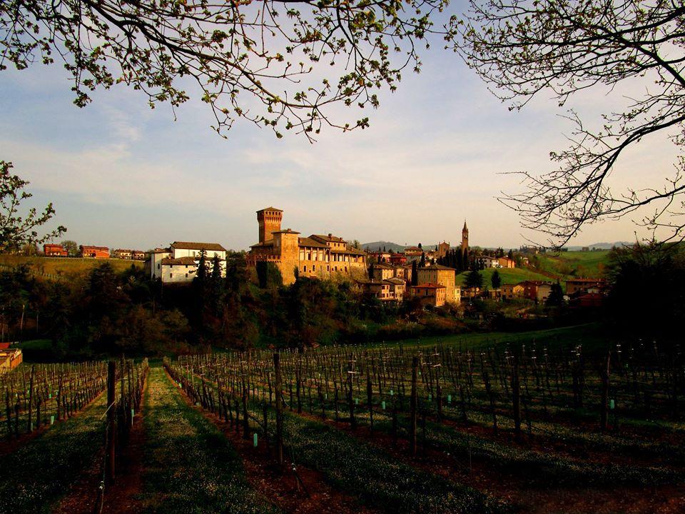 Levizzano - Luca Nacchio - Castelvetro di Modena (MO)