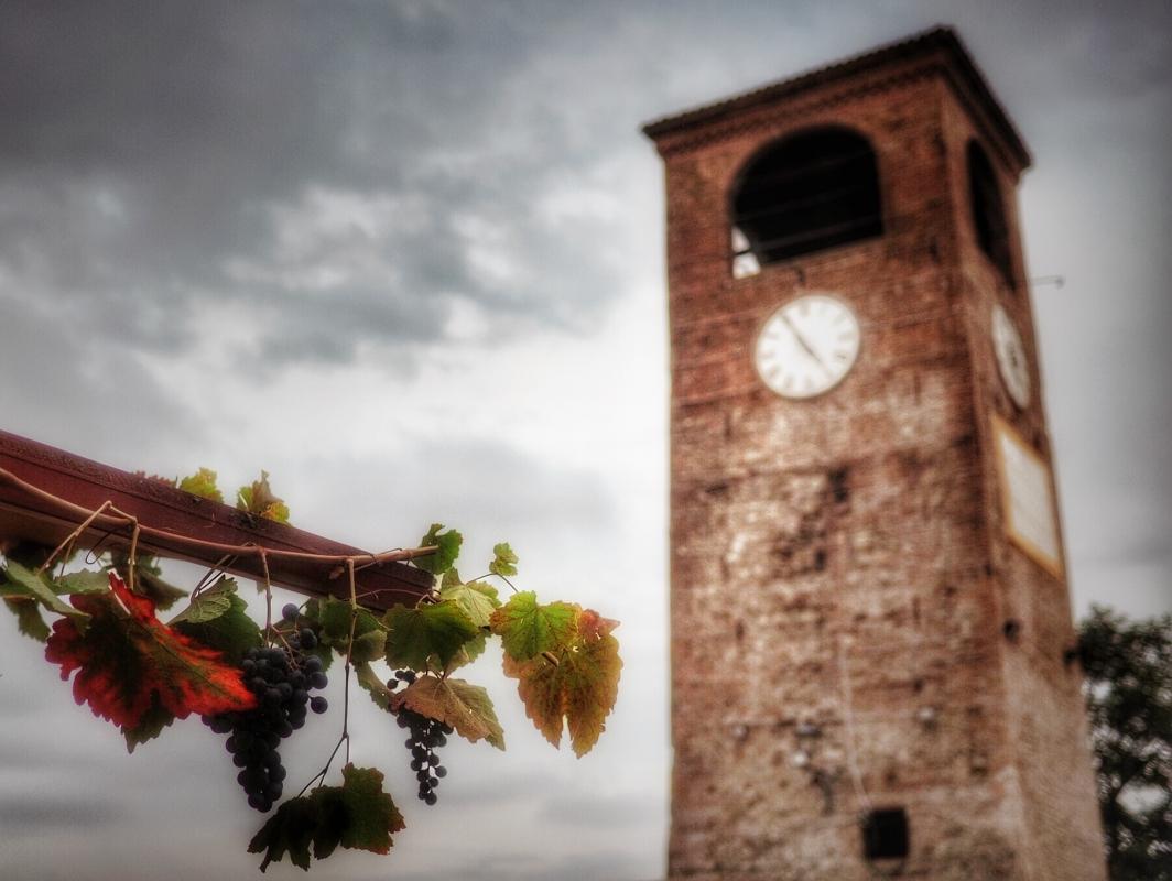 I simboli della cultura e delle enogastronomia - Loris.tagliazucchi - Castelvetro di Modena (MO)