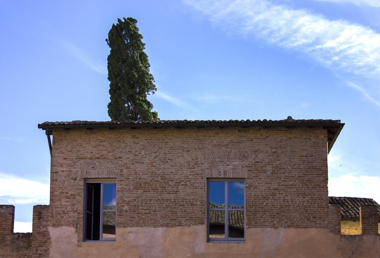 Castello di Spezzano (3)-5 - Ovikovi - Fiorano Modenese (MO)