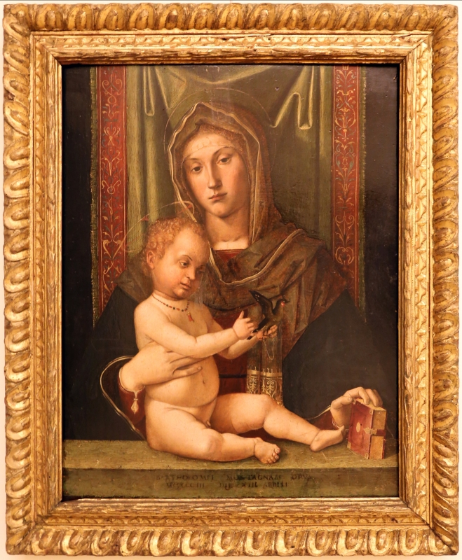 Bartolomeo montagna, madonna col bambino, 1503 - Sailko - Modena (MO)