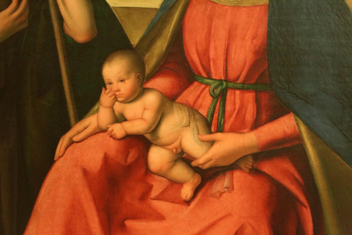 Boccaccio boccaccino, adorazione dei pastori, 1501 ca. 05 - Sailko - Modena (MO)