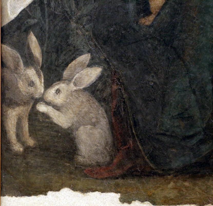 Correggio, madonna dei limoni, 1511, 02 conigli - Sailko - Modena (MO)