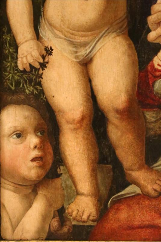 Giovan francesco caroto, madonna col bambino e san giovannino, 1501, 02 - Sailko - Modena (MO)
