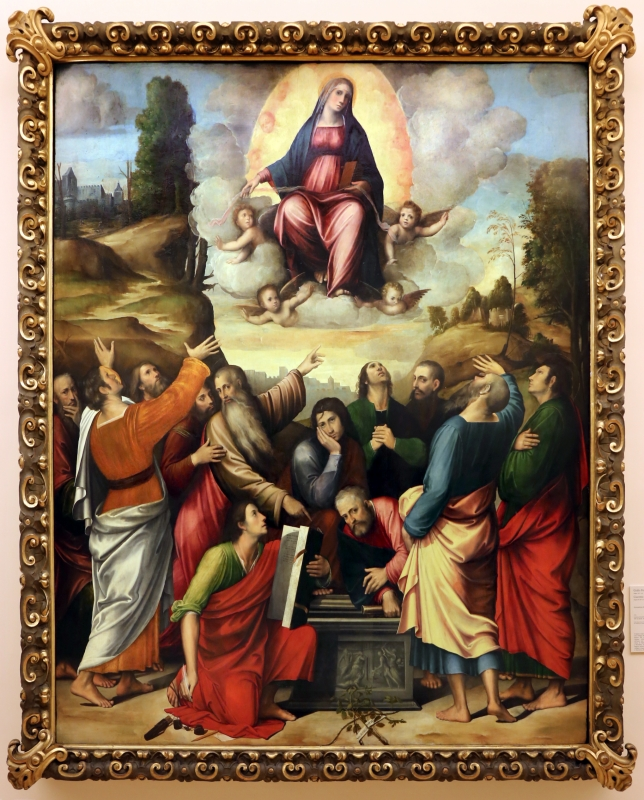 Giulio e giacomo francia, assunzione della vergine, 1513, 01 - Sailko - Modena (MO)