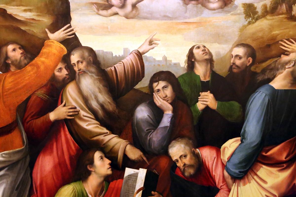 Giulio e giacomo francia, assunzione della vergine, 1513, 02 - Sailko - Modena (MO)