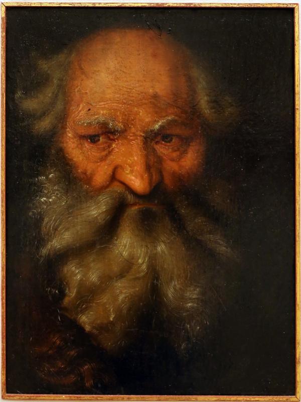 Hans baldung grien (attr.), testa di vecchio, 1518-19 ca - Sailko - Modena (MO)