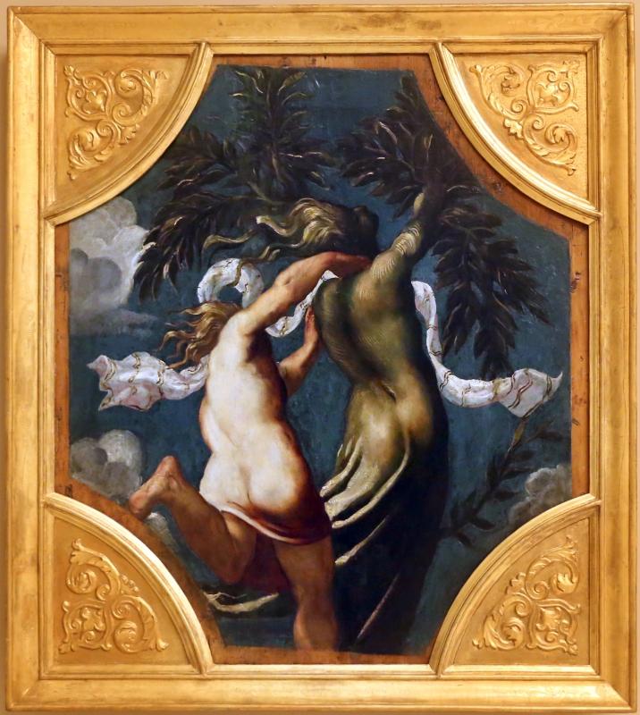Tintoretto, tavole per un soffitto a palazzo pisani in san paterniano a venezia, 1541-42, apollo e dafne - Sailko - Modena (MO)