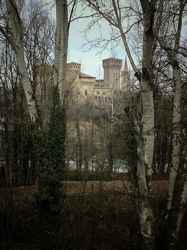 20170112 105147-01 la Rocca tra gli alberi al di là del fiume - Massimo F. Dondi - Vignola (MO)