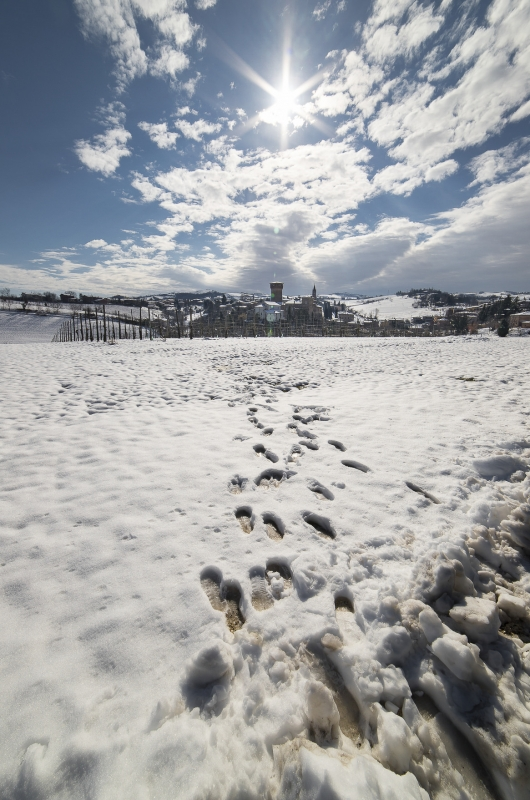 Subito dopo una bella nevicata - Angelo nastri nacchio - Castelvetro di Modena (MO)
