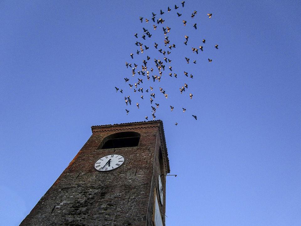 Scocca l'ora della primavera sul borgo - Luca Nacchio - Castelvetro di Modena (MO)