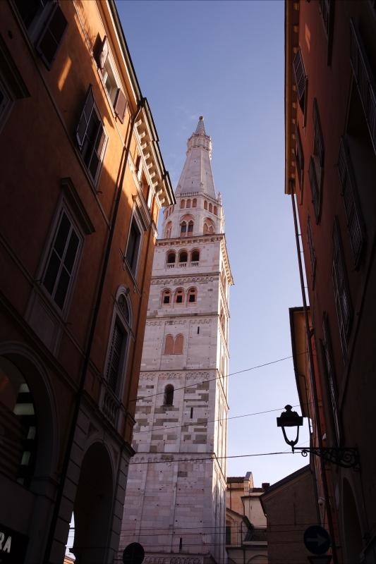 Sua maestà in bianco, ci osserva tutti dall'alto - Francesca Giovanelli - Modena (MO)