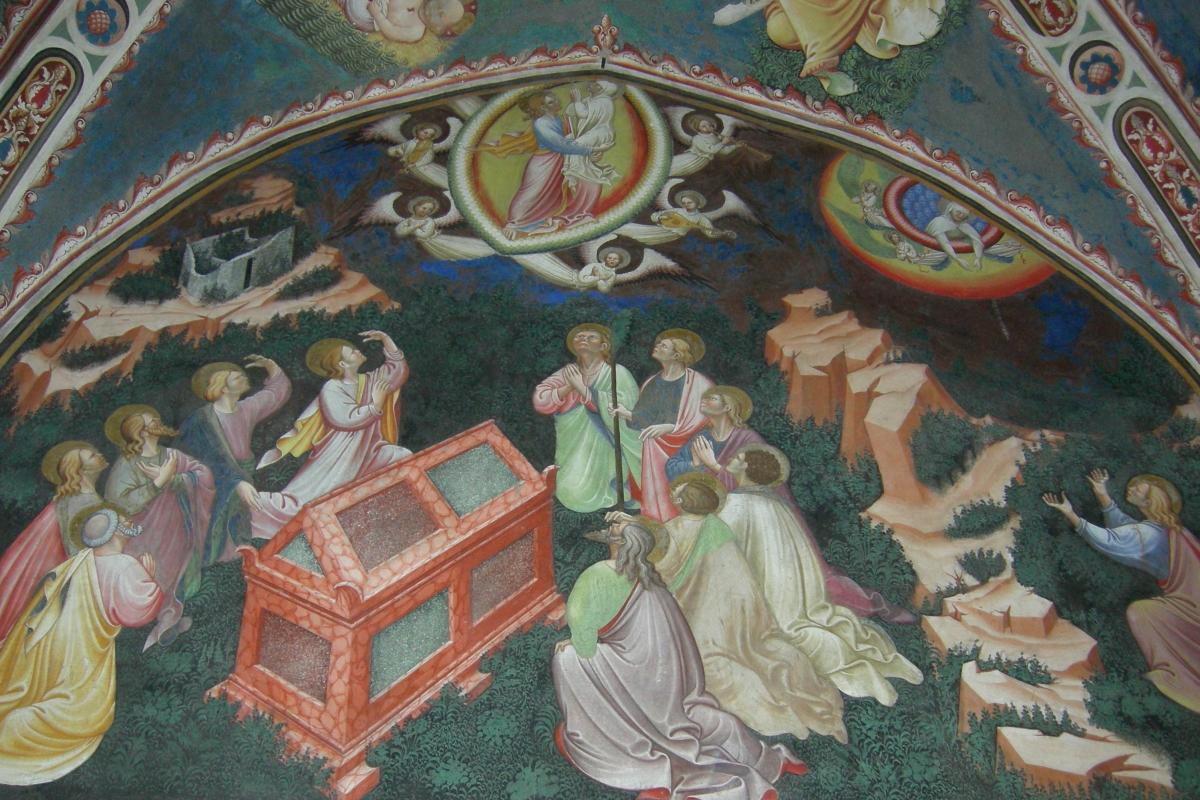 Maestro di Vignola Assunzione della Vergine - cappella Contrari, Rocca di Vignola particolare - Nicola Quirico - Vignola (MO)