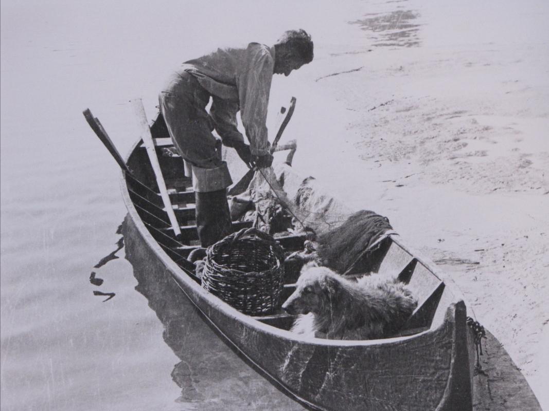 Pescatore 2 - Franco Franzini - Piacenza (PC)