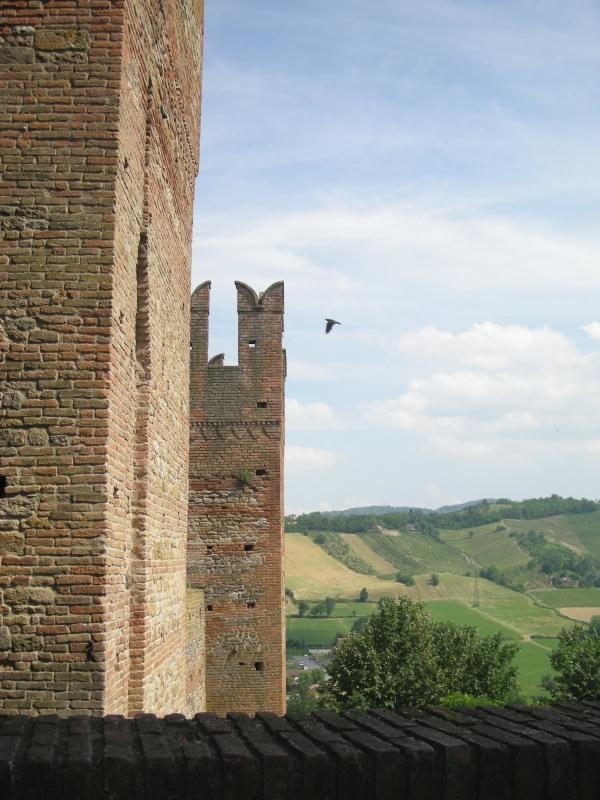 Torri della rocca Viscontea e scorcio di Castell' Arquato - Antonella Mereu - Castell'Arquato (PC)