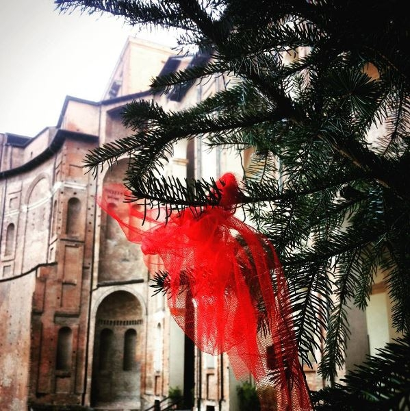 Palazzo Farnese Piacenza 05 - Naoma1986 - Piacenza (PC)