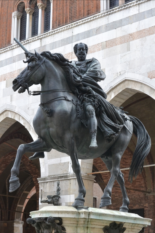 Forza equestre - CLAUDIABAQ - Piacenza (PC)