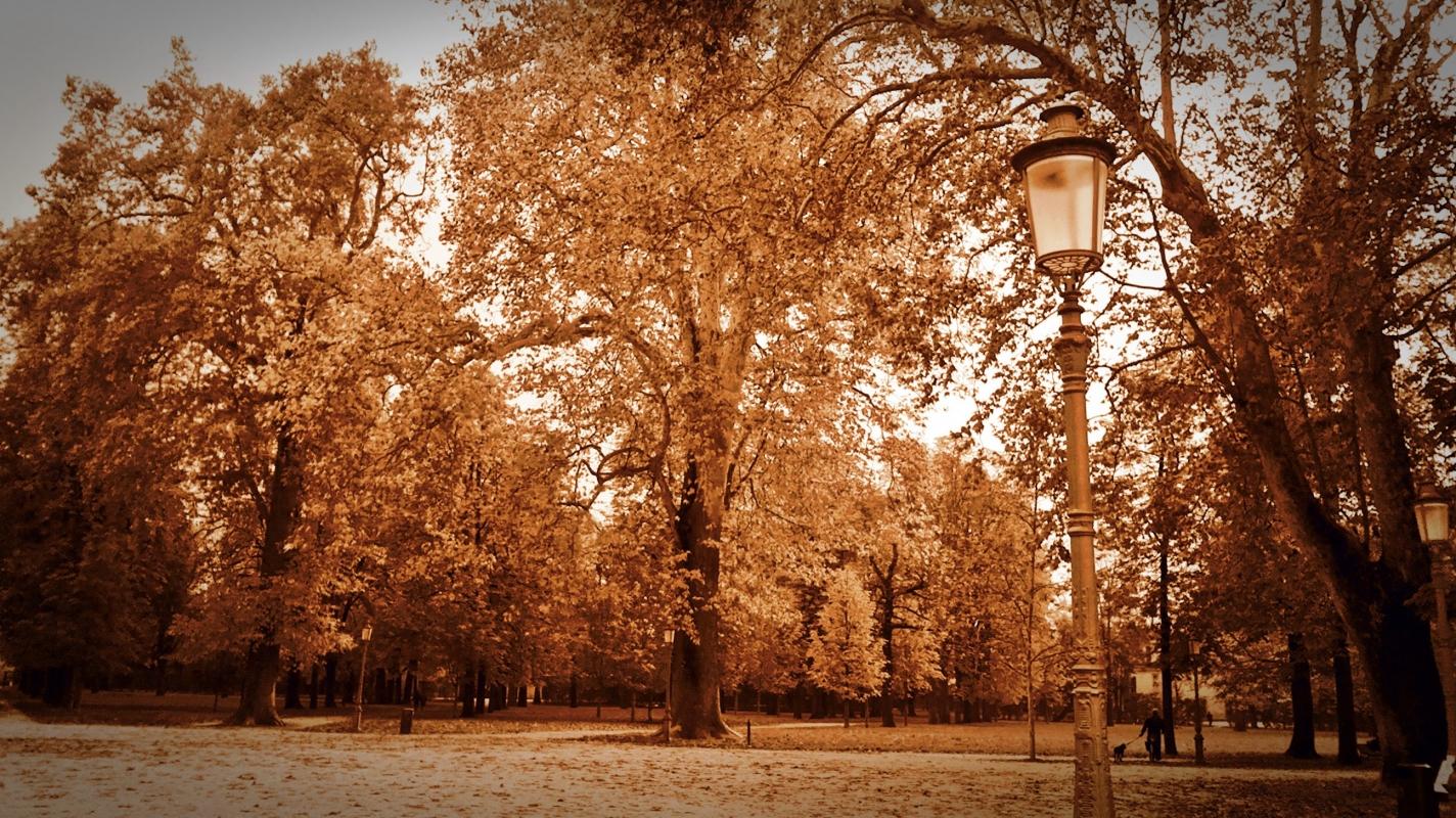 Lampione nel parco - Rocco93555 - Parma (PR)