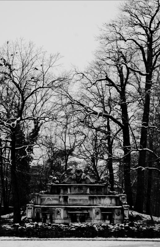 Isola del laghetto del parco ducale - Virgi24 - Parma (PR)