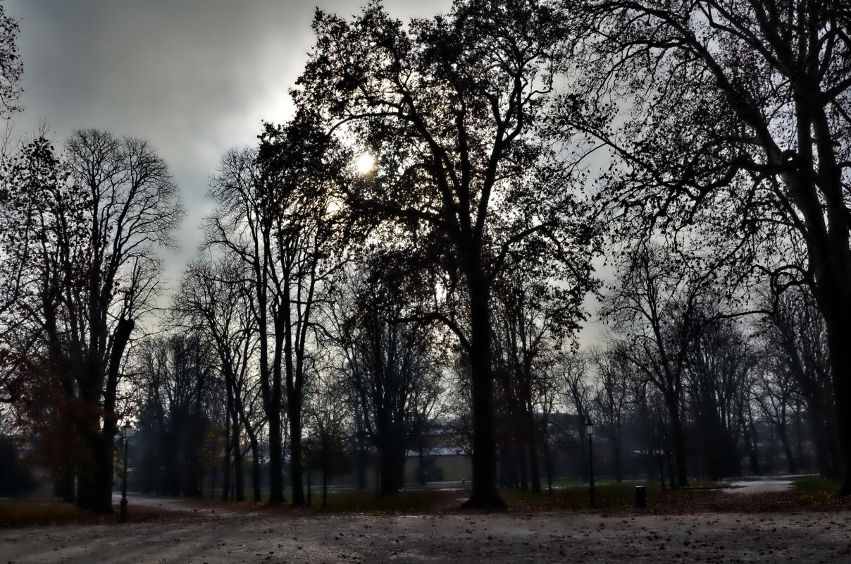Il parco ducale - Paperkat - Parma (PR)