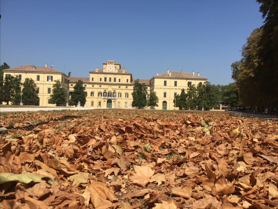Palazzo Ducale di Parma con le foglie - Simo129 - Parma (PR)