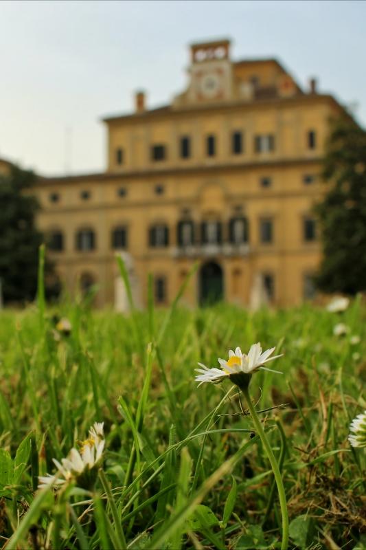 Il prato davanti al Palazzo del Giardino - Pattypagaz - Parma (PR)