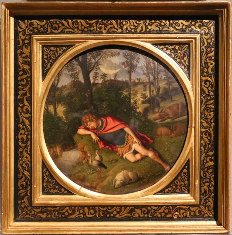 Cima da conegliano, endimione dormiente, 1505-10 ca - Sailko - Parma (PR)