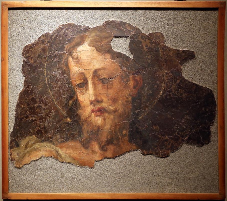 Michelangelo anselmi, testa del battista, 1530 ca - Sailko - Parma (PR)