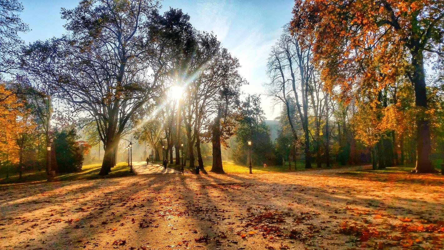 Parco Ducale d'autunno vestito - Fedenew1983 - Parma (PR)