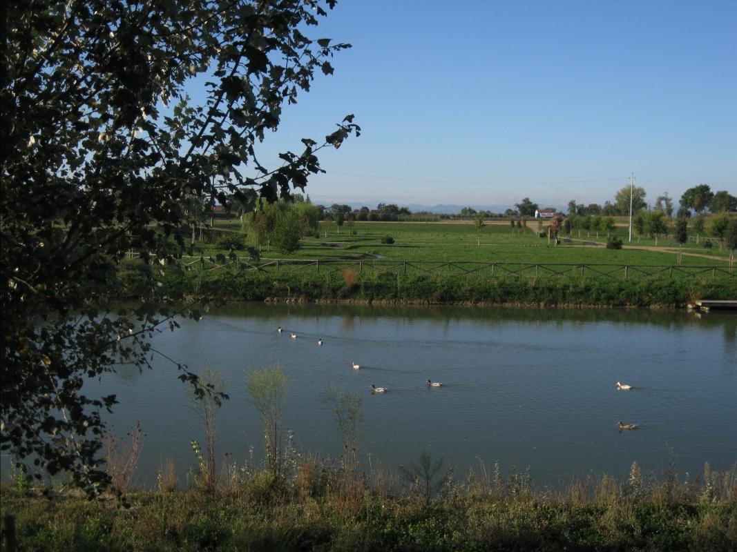 Parco Golfera, veduta 2 - Sofiadiviola - Lugo (RA)
