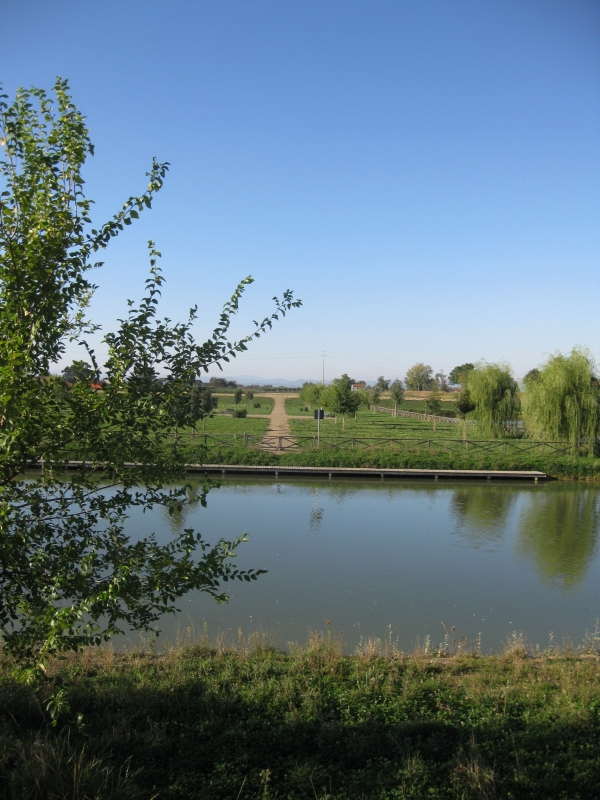 Parco Golfera, veduta 4 - Sofiadiviola - Lugo (RA)