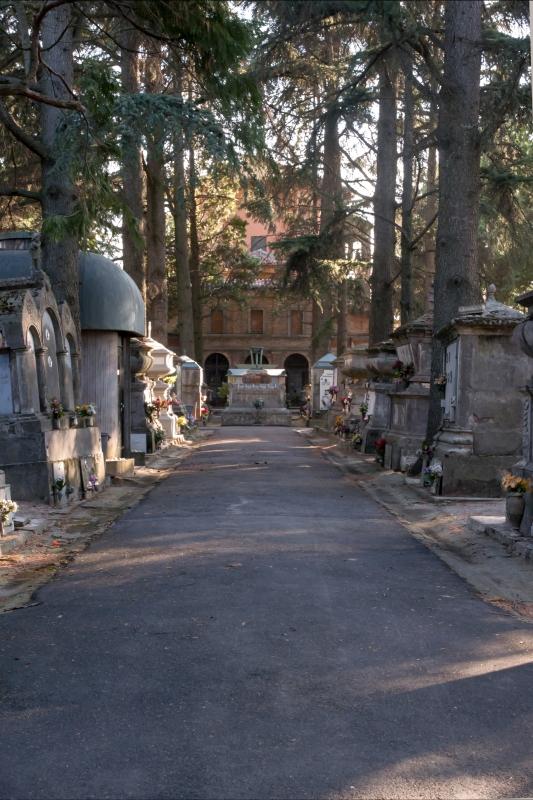Cimitero dietro - Roberto Marconi 62 - Massa Lombarda (RA)