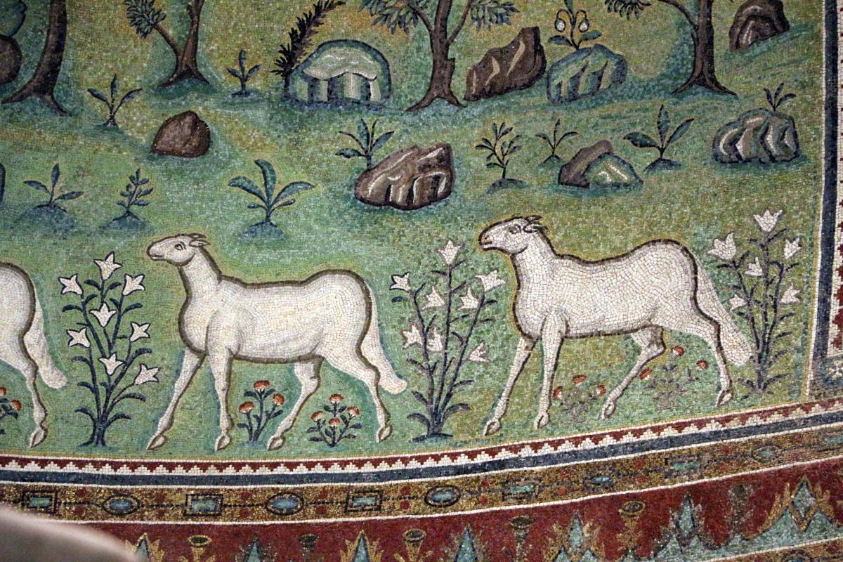 Sant'apollinare in classe, mosaici del catino, trasfigurazione simbolica, VI secolo, 14 agnelli come apostoli - Sailko - Ravenna (RA)