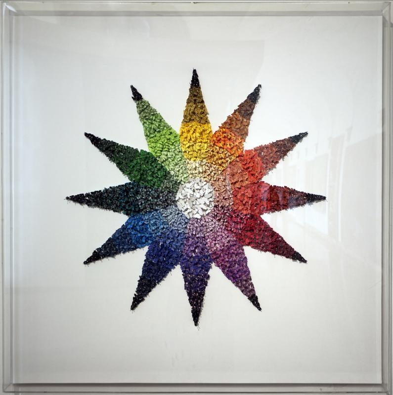 Michael gambino, stella cromatica (farfalle in carta appuntate con spilli), 2013 - Sailko - Ravenna (RA)