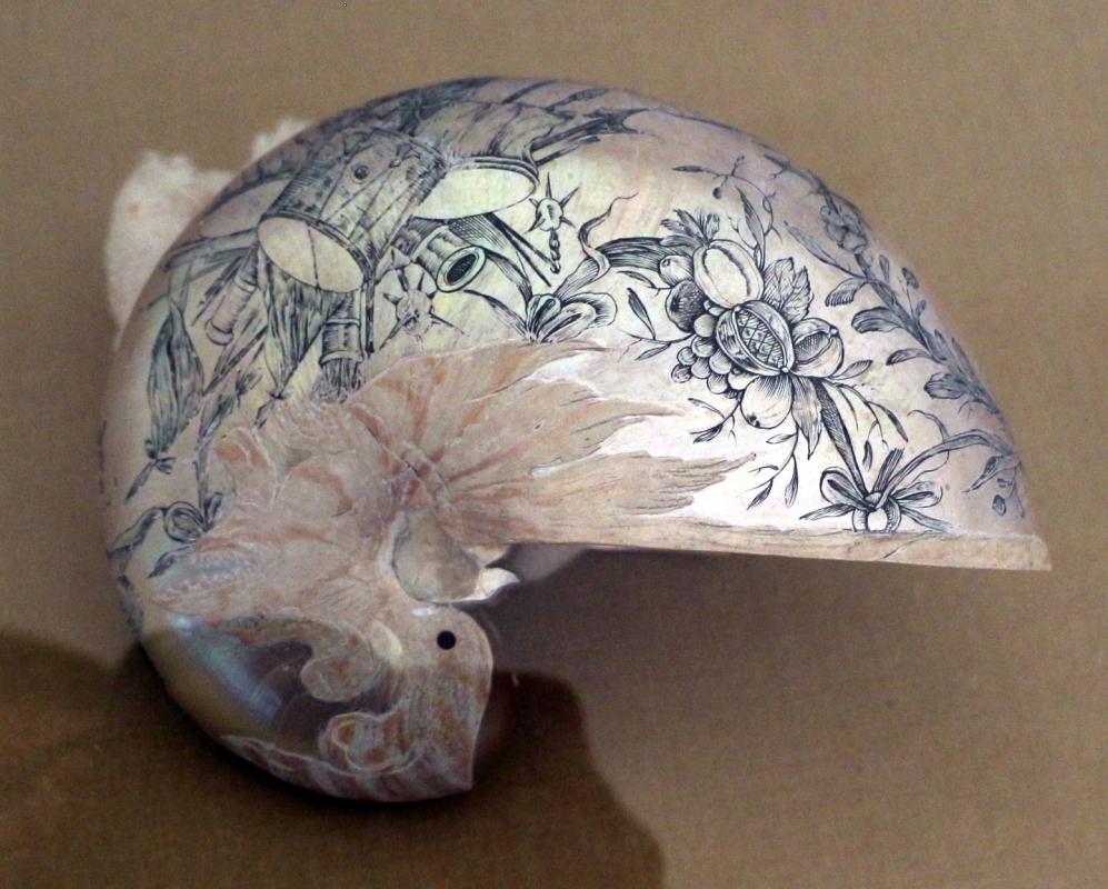 Fiandre o germania, conchiglia di nautilus, xvii secolo 02 - Sailko - Ravenna (RA)
